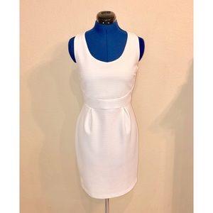 Sunday in Brooklyn Striped Sheath Dress in White
